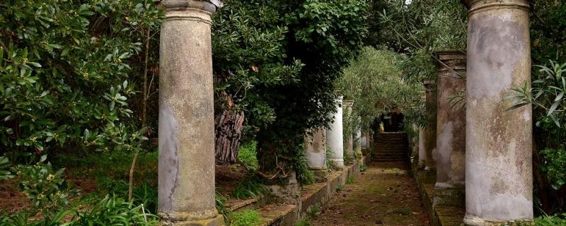 Wyjazd naukowy studentów - Neapol